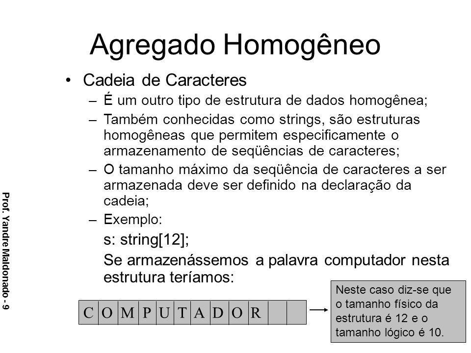 Agregado Homogêneo Cadeia de Caracteres s: string[12];